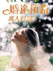 男主是顾北辰的小说,婚途陌路离人归全文完结版免费阅读