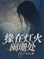男主是傅域的小说,缘在灯火阑珊处全文完结版免费阅读