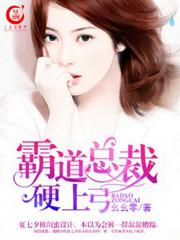 男主是韩亦辰的小说,霸道总裁硬上弓全文完结版免费阅读