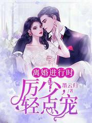 男主是厉风行的小说,离婚进行时:厉少,轻点宠全文完结版免费阅读