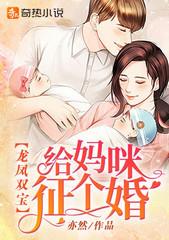 男主是沈北辰的小说,龙凤双宝:给妈咪征个婚全文完结版免费阅读