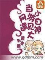 男主是擎天柱的小说,当网游小白遇见大神全文完结版免费阅读