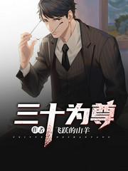 男主是张瑜的小说,三十为尊全文完结版免费阅读