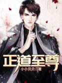 男主是陈风的小说,正道至尊全文完结版免费阅读  第1张