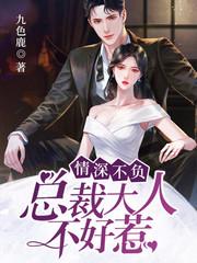 男主是顾琛的小说,情深不负:总裁大人不好惹全文完结版免费阅读  第1张