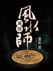 男主是杨晨的小说,顶级风水师全文完结版免费阅读  第1张