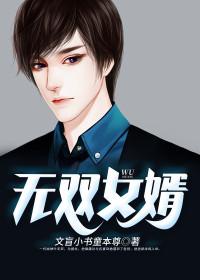 男主是叶枫的小说,无双女婿全文完结版免费阅读  第1张