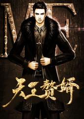 男主是叶辰的小说,天王赘婿全文完结版免费阅读  第1张
