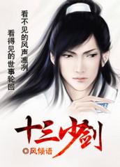 男主是天情的小说,十三少剑全文完结版免费阅读  第1张