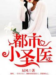 男主是陈峰的小说,都市小圣医全文完结版免费阅读  第1张