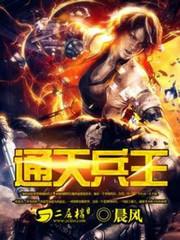 男主是赵辰的小说,通天兵王全文完结版免费阅读  第1张