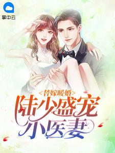 男主是陆绎宸的小说,替嫁暖婚:陆少盛宠小医妻全文完结版免费阅读  第1张