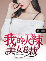 男主是江南的小说,我的火辣美女总裁全文完结版免费阅读  第1张