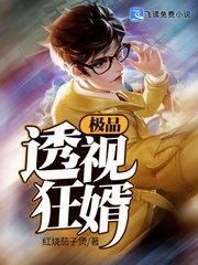 男主是叶枫的小说,极品透视狂婿全文完结版免费阅读  第1张