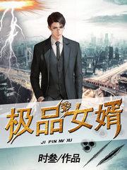 男主是刘猛的小说,极品女婿全文完结版免费阅读  第1张