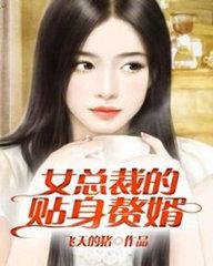 男主是叶北的小说,女总裁的近身高手全文完结版免费阅读  第1张