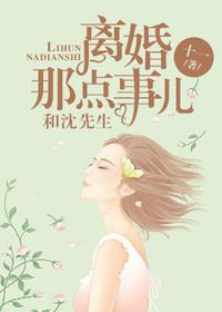 男主是沈南言的小说,和沈先生离婚那点事儿全文完结版免费阅读