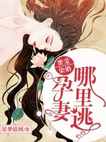 男主是霍今山的小说,蜜爱染婚:孕妻哪里逃全文完结版免费阅读